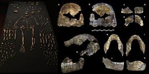 scoperta-una-nuova-specie-umana-600x300