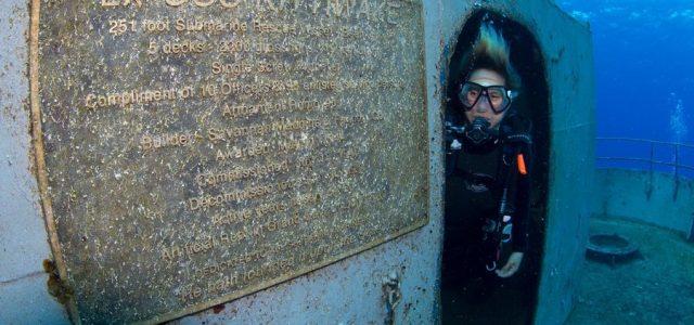 Dalle gelide acque della Scozia, alla barriera corallina: ecco dove riposano questi relitti C'è qualcosa nei relitti che stuzzica l'immaginazione e che incuriosisce l'uomo. Forse è il pensiero terribile di […]
