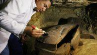 Tombe, manufatti, 1000 statue e 40 sarcofagi, scoperti nei pressi di Minya. E' stata scoperta inEgittouna nuova necropoli, nei pressi di Minya, circa 220 chilometri a sud del Cairo. Ad […]